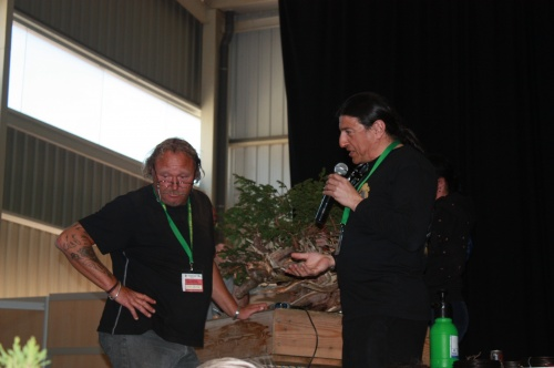 Bonsai Kevin Wilson European Bonsai Association Spain 2009 - EBA Lorca