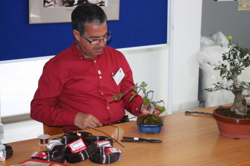 Bonsai Charla / Demostración de Jose Gomez del Rio - Bonsai Oriol