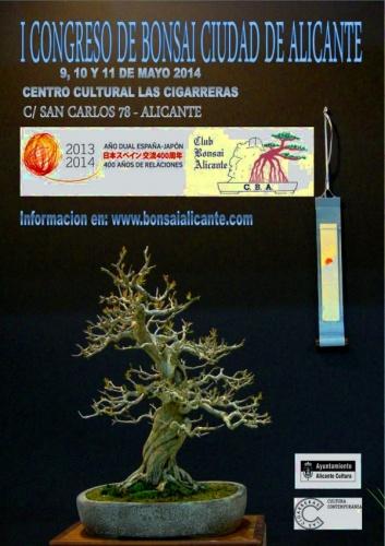 Cartel Primer congreso de bonsai ciudad de Alicante