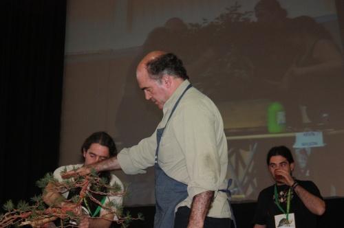 Bonsai Luis Vallejo - Congreso Europeo de Bonsai 2009 - EBA Lorca