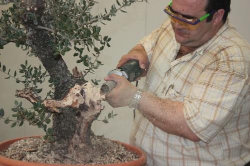 Como hacer un bonsái con Dremel - Antonio Torres