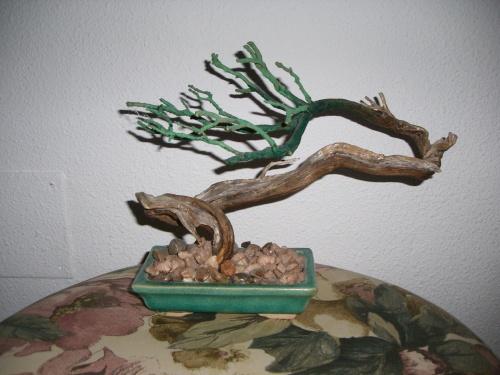 Bonsai 3003 - mihogo