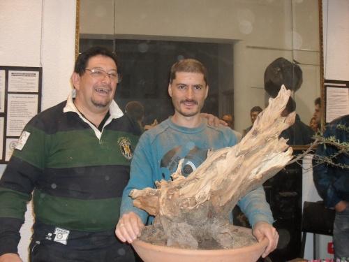 Bonsai 5951 - Andres Bicocca