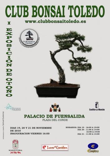 Bonsai Bonsai Toledo - Exposicion de otoño - eventos