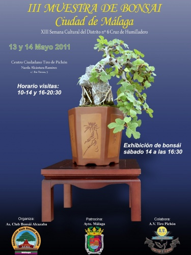 Cartel III Muestra de Bonsai Ciudad de Malaga