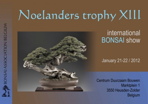 Bonsai Noelanders Trophy XIII - eventos