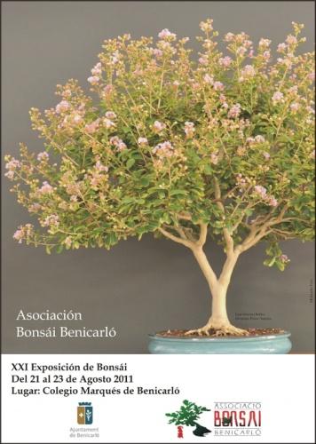 Cartel Exposición Bonsai Benicarló - Fiestas Patronales
