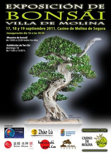 Bonsai Expo en Villa de Molina - eventos