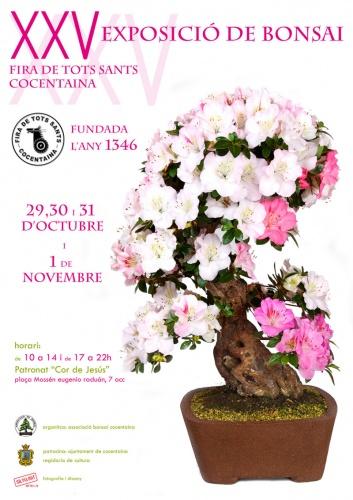 Cartel XXV Exposición en Cocentaina - Alicante
