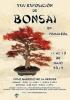 Cartel XXIV Exposición de Bonsai Primavera en Cordoba