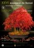 Cartel XXVI Exposició de Bonsai - Cocentaina