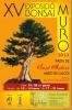 Cartel XV Exposició Bonsai Muro - Fireta de Sant Antoni