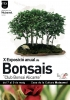 Cartel X Exposicion Bonsai Alicante - Club Bonsai Alicante