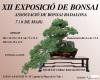 Cartel XII Exposicio de bonsai Badalona