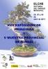 Cartel XVII Exposicion de Primavera y V Muestra Provincial de Bonsai
